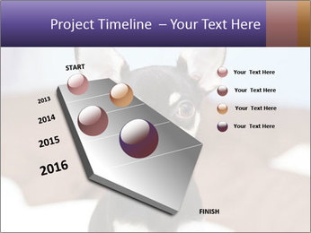 0000074569 PowerPoint Template - Slide 26