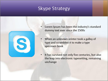 0000074569 PowerPoint Template - Slide 8