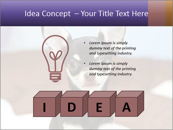 0000074569 PowerPoint Template - Slide 80