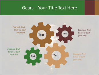 0000074576 PowerPoint Template - Slide 47