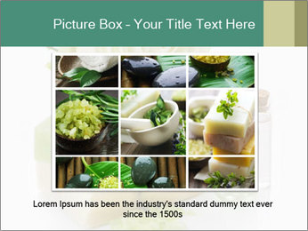 0000074579 PowerPoint Template - Slide 16