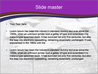 0000074580 PowerPoint Template - Slide 2