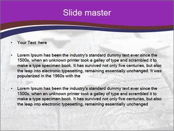 0000074580 PowerPoint Templates - Slide 2