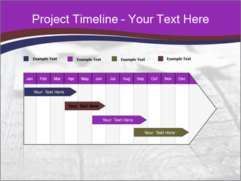 0000074580 PowerPoint Template - Slide 25
