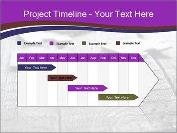 0000074580 PowerPoint Templates - Slide 25