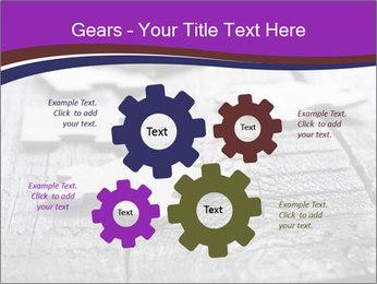 0000074580 PowerPoint Templates - Slide 47