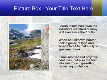 0000074583 PowerPoint Templates - Slide 13
