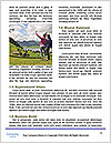 0000074583 Word Template - Page 4