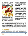 0000074596 Word Templates - Page 4