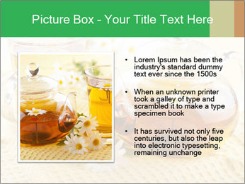 0000074605 PowerPoint Template - Slide 13