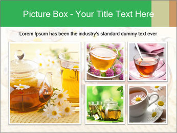 0000074605 PowerPoint Template - Slide 19