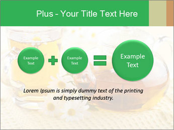 0000074605 PowerPoint Template - Slide 75