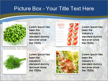 0000074606 PowerPoint Template - Slide 14