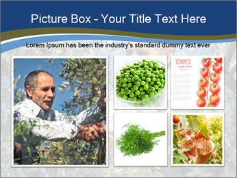 0000074606 PowerPoint Template - Slide 19