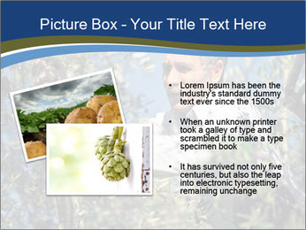 0000074606 PowerPoint Template - Slide 20