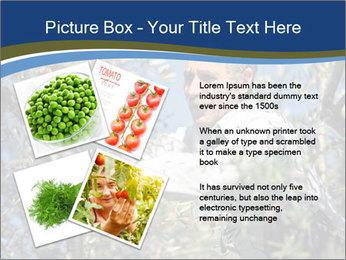 0000074606 PowerPoint Template - Slide 23