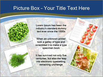 0000074606 PowerPoint Template - Slide 24