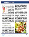 0000074606 Word Template - Page 3
