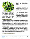 0000074606 Word Template - Page 4
