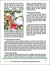 0000074612 Word Templates - Page 4