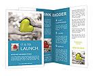 0000074617 Brochure Templates