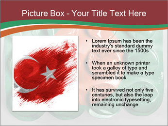 0000074618 PowerPoint Template - Slide 13