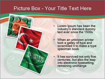 0000074618 PowerPoint Template - Slide 17