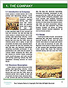 0000074623 Word Template - Page 3