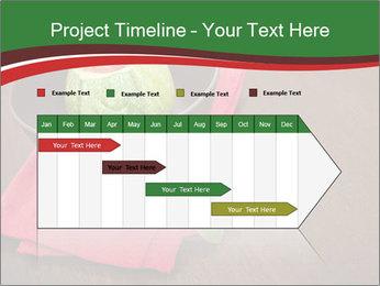 0000074628 PowerPoint Templates - Slide 25