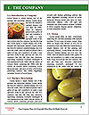 0000074628 Word Template - Page 3