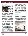 0000074633 Word Template - Page 3