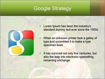 0000074635 PowerPoint Template - Slide 10