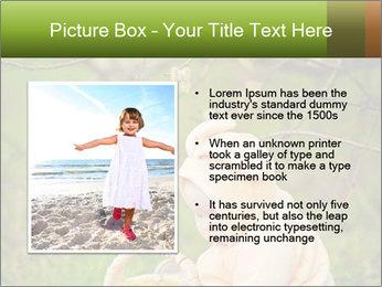 0000074635 PowerPoint Template - Slide 13
