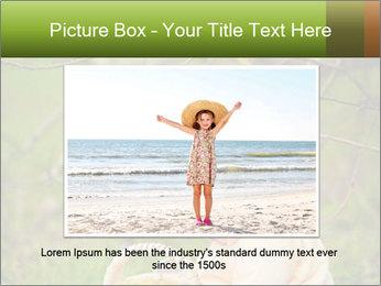 0000074635 PowerPoint Template - Slide 15
