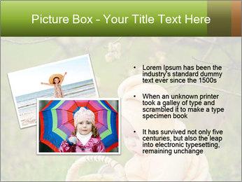 0000074635 PowerPoint Template - Slide 20