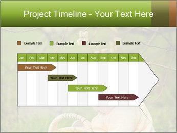 0000074635 PowerPoint Template - Slide 25