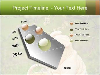 0000074635 PowerPoint Template - Slide 26