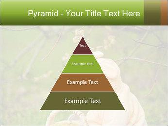 0000074635 PowerPoint Template - Slide 30
