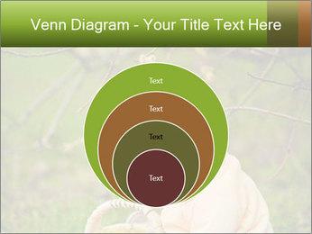 0000074635 PowerPoint Template - Slide 34
