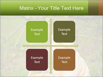 0000074635 PowerPoint Template - Slide 37