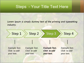 0000074635 PowerPoint Template - Slide 4