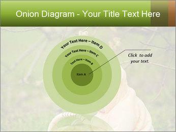 0000074635 PowerPoint Template - Slide 61
