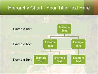 0000074635 PowerPoint Template - Slide 67