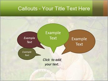 0000074635 PowerPoint Template - Slide 73