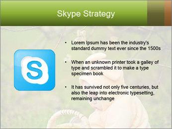 0000074635 PowerPoint Template - Slide 8