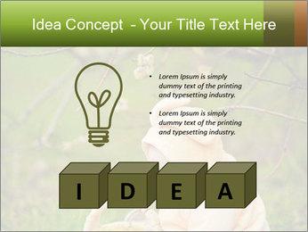0000074635 PowerPoint Template - Slide 80