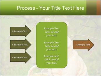 0000074635 PowerPoint Template - Slide 85