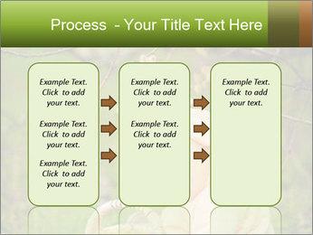 0000074635 PowerPoint Template - Slide 86