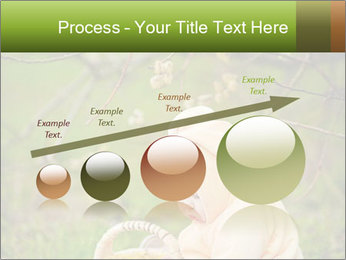 0000074635 PowerPoint Template - Slide 87