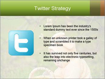 0000074635 PowerPoint Template - Slide 9